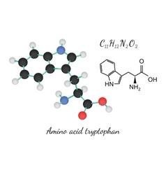 C11h12n2o2 amino acid tryptopha molecule vector
