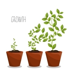 Nature plants growth vector