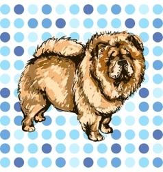 Pets dog vector