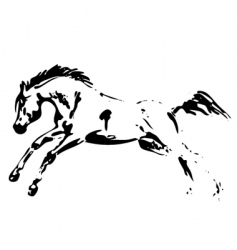 horse jumping vector image