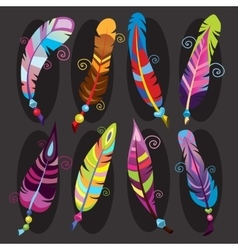 Bright colored feathers with beads vector image
