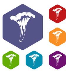 Chanterelle icons set hexagon vector