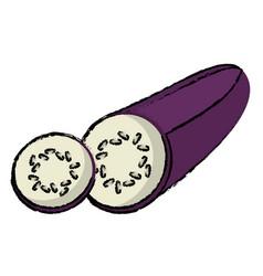 Eggplant slice food diet healthy vector