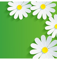 3d flower chamomile spring abstract background vector
