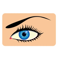 Close-up of beautiful eye vector