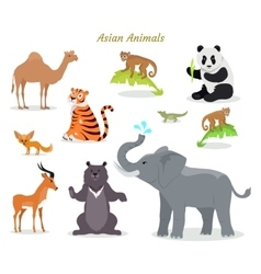 Asian animals fauna species camel panda tiger vector