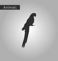 black and white style icon of parrot vector image vector image