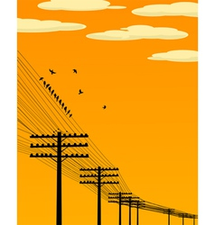 Birds and telegraph poles vector