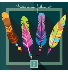 Bright colored feathers with beads vector