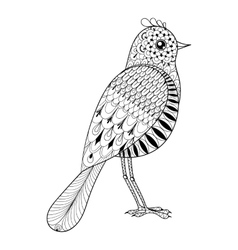 Hand drawn zentangle artistic bird for adult vector