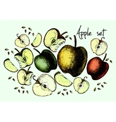 Set of drawing apples vector image vector image
