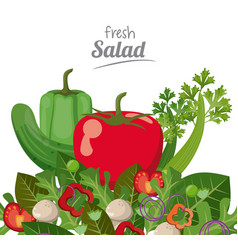Fresh salad menu food health nutrition ingredient vector