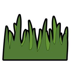 Grass icon image vector