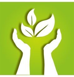 hands caring leaves vector image vector image