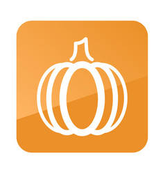 pumpkin outline icon vegetable vector image vector image