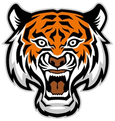 tiger head mascot vector image