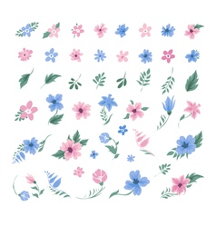 Set of flowers for decoration and greeting cards vector