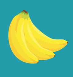 Banana tropical fruit icon vector