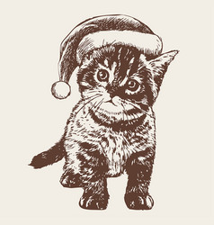 Little cat kitten with christmas santa hat vector