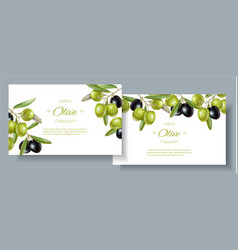 olive horizontal banners vector image