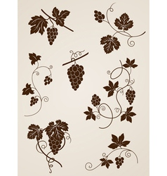 decorative grape vine elements vector image
