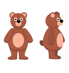 bear from the front bear vector image vector image