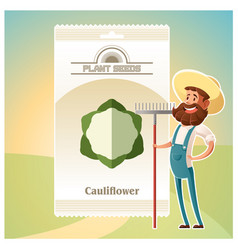 pack of cauliflower seeds icon vector image vector image