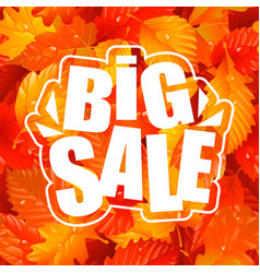 Autumn lettering of big sale text and fall leaves vector