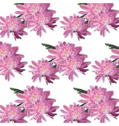 Chrysanthemum flowers pattern vector