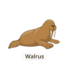 Walrus cartoon vector