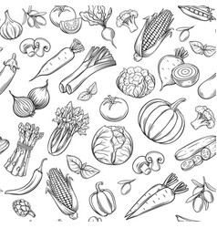 hand drawn vegetables seamless pattern vector image
