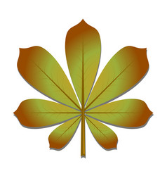 the chestnut leaf in autumn vector image vector image
