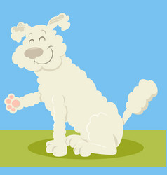 White poodle dog cartoon vector