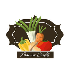 vegetables premium quality fresh image vector image