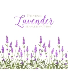 Wreath of lavender flowers vector image