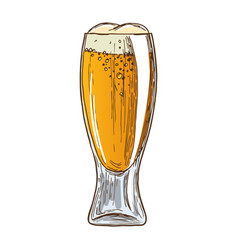 beer glass on white background vector image vector image