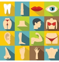 Body parts icons set flat style vector