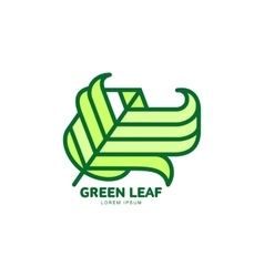 Pointed green leaf growing up logo template vector