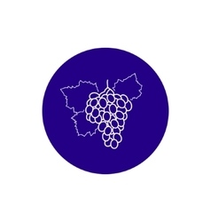 Icon grapes in the contours vector