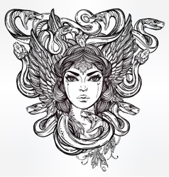 Mythological Medusa portriat vector image
