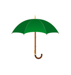 Umbrella in green design vector