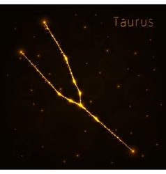 Taurus silhouette of lights vector
