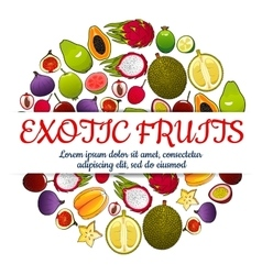 Exotic fresh fruits poster vector