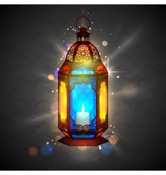 Illuminated lamp on ramadan kareem generous vector