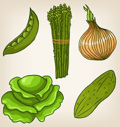 Set of cute hand drawn vegetables vector