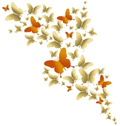 Cute gold colorful butterfly spring vector image vector image