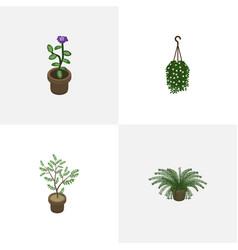 Isometric houseplant set of blossom plant flower vector