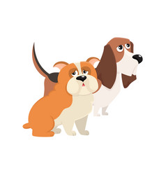 cute funny dog characters - jbasset hound and vector image
