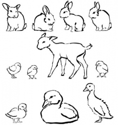 Spring baby animals vector