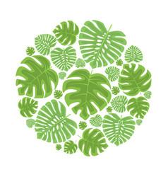 Palm leaf decoration vector